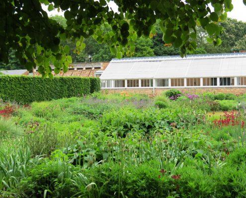 Hund und Herrlich_Scampston Garten