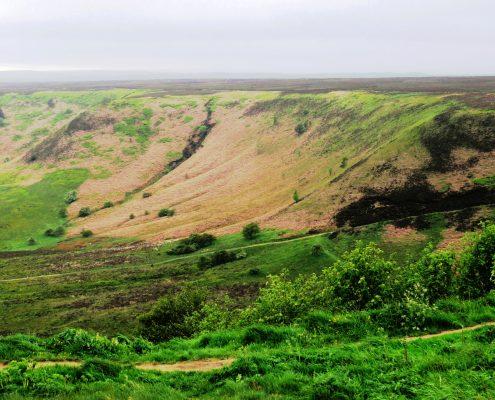 Hund und Herrlich_North Yorkshire Moors