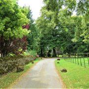 Hund und Herrlich_Grossbritannien_Wanderung durch Cotswolds (Nähe Wyck Rissington)