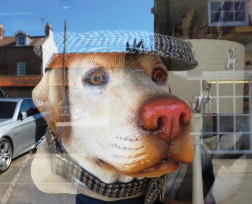 Hund und Herrlich_Helmsley