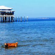 Hund und Herrlich_Timmendorfer Strand
