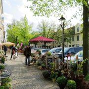 Hund und Herrlich_Gutenbergstrasse/Lindenstrasse