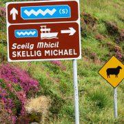 Hund und Herrlich_Irland_Ring of Kerry