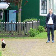 Hund und Herrlich_Niederlande_Zaanse Schans