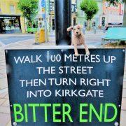 Hund und Herrlich_Grossbritannien_England_Lake District_Cockermouth