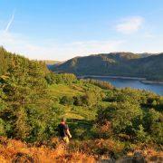 Hund und Herrlich_Grossbritannien_England_Lake District_A 591 zwischen Ambleside und Keswick_Thirimere