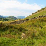 Hund und Herrlich_Grossbritannien_England_Lake District_Thirlmere
