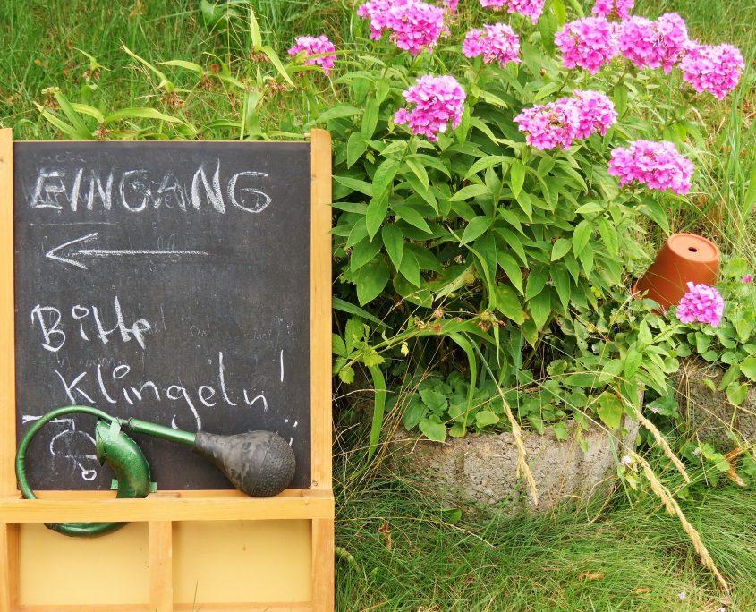 Hund und Herrlich_Ferch/Schwielowsee_im Garten von Kräuter-Heidi