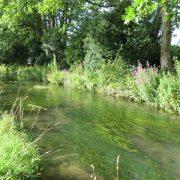Hund und Herrlich_Grossbritannien_England_Cotswolds_Bourton on the Water