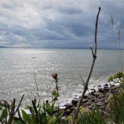 Hund und Herrlich_Grossbritannien_Wales_Llandudno_Great Orme_Irische See